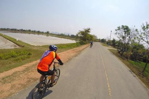 Two cyclists riding along a road beside rice paddies in Vietnam